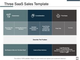 Three SaaS Sales Consideration Ppt Professional Shapes
