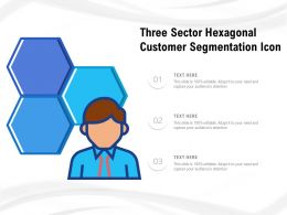 Three Sector Hexagonal Customer Segmentation Icon