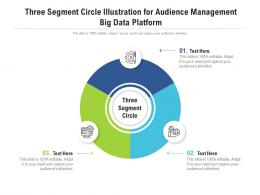 Three Segment Circle Illustration For Audience Management Big Data Platform Infographic Template