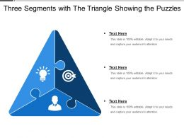 three_segments_with_the_triangle_showing_the_puzzles_Slide01