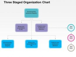 Three Staged Organization Chart Flat Powerpoint Design