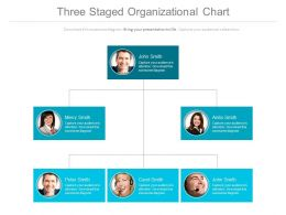 Three Staged Organizational Chart With Business Employees Powerpoint Slides