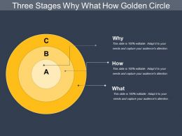 Three Stages Why What How Golden Circle