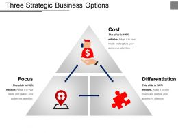 Three Strategic Business Options Ppt Examples Slides