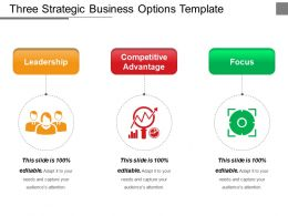 Three Strategic Business Options Template Ppt Examples