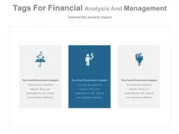 Three Tags For Financial Analysis And Management Powerpoint Slides