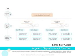 Three Tier Crisis Response Organizational Structure Ppt Gallery
