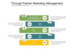 Through Partner Marketing Management Ppt Powerpoint Presentation Model Graphics Tutorials Cpb