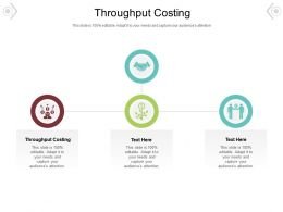 Throughput Costing Ppt Powerpoint Presentation Gallery Topics Cpb