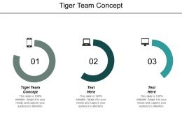 Tiger Team Concept Ppt Powerpoint Presentation Outline Portrait Cpb