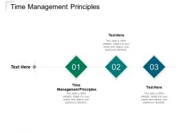 Time Management Principles Ppt Powerpoint Presentation Summary Cpb