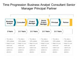 Time Progression Business Analyst Consultant Senior Manager Principal Partner