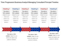 Time Progression Business Analyst Managing Consultant Principal Timeline