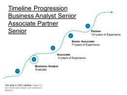 Time Progression Business Analyst Senior Associate Partner Senior