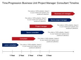 Time Progression Business Unit Project Manager Consultant Timeline