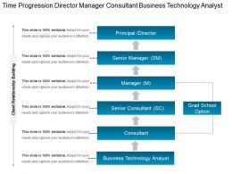 Time Progression Director Manager Consultant Business Technology Analyst