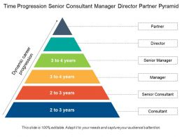 Time Progression Senior Consultant Manager Director Partner Pyramid