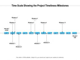 Time Scale Showing The Project Timeliness Milestones