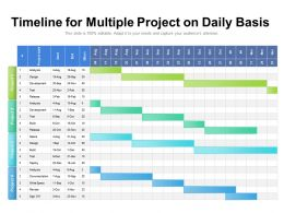 Timeline For Multiple Project On Daily Basis