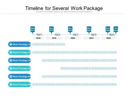 Timeline For Several Work Package