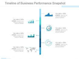 Timeline Of Business Performance Snapshot Ppt Infographics