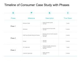 Timeline Of Consumer Case Study With Phases Ppt Powerpoint Presentation