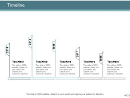 Timeline Roadmap Marketing Ppt Powerpoint Presentation Ideas Background Designs