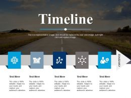 Timeline Roadmap Ppt Powerpoint Presentation File Professional