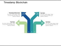 Timestamp Blockchain Ppt Powerpoint Presentation File Background Image Cpb