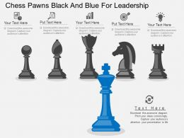 tj_chess_pawns_black_and_blue_for_leadership_flat_powerpoint_design_Slide01
