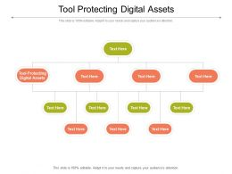 Tool Protecting Digital Assets Ppt Powerpoint Presentation Slides Ideas Cpb