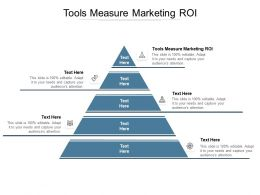 Tools Measure Marketing ROI Ppt Powerpoint Presentation Inspiration Layouts Cpb