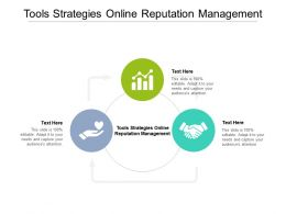 Tools Strategies Online Reputation Management Ppt Powerpoint Presentation Ideas Show Cpb