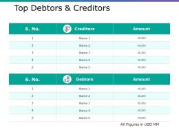 Top Debtors And Creditors Ppt Gallery Picture