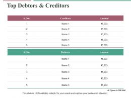 Top Debtors And Creditors Ppt Infographic Template Graphics Pictures