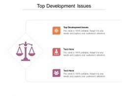 Top Development Issues Ppt Powerpoint Presentation Show Structure Cpb