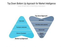 Top Down Bottom Up Approach For Market Intelligence