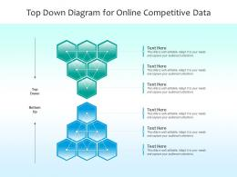 Top Down Diagram For Online Competitive Data Infographic Template