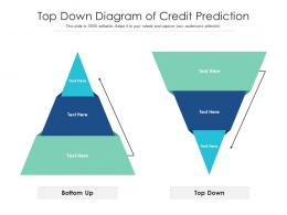 Top Down Diagram Of Credit Prediction Infographic Template