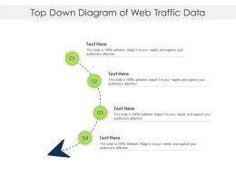 Top Down Diagram Of Web Traffic Data Infographic Template