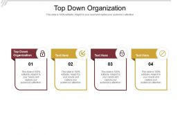 Top Down Organization Ppt Powerpoint Presentation Styles Guidelines Cpb