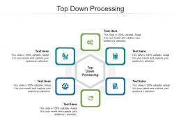 Top Down Processing Ppt Powerpoint Presentation Summary Example Cpb
