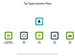 Top Types Incentive Plans Ppt Powerpoint Presentation Visual Aids Slides Cpb