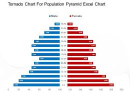 Tornado Chart For Population Pyramid Excel Chart Powerpoint Layout