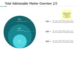 Total Addressable Marker Overview 2 3 Ppt Powerpoint Presentation Gallery Designs