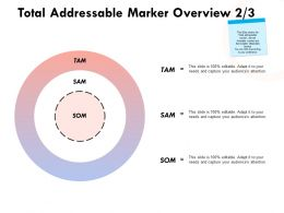 Total Addressable Marker Overview Strategy Ppt Powerpoint Presentation Ideas Graphics