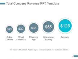 Total Company Revenue Ppt Template