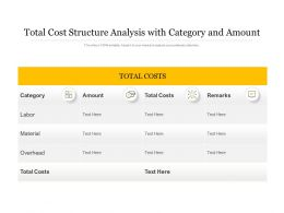 Total Cost Structure Analysis With Category And Amount