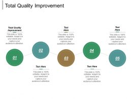 Total Quality Improvement Ppt Powerpoint Presentation Gallery Influencers Cpb