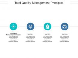 Total Quality Management Principles Ppt PowerPoint Presentation Pictures Graphics Design Cpb